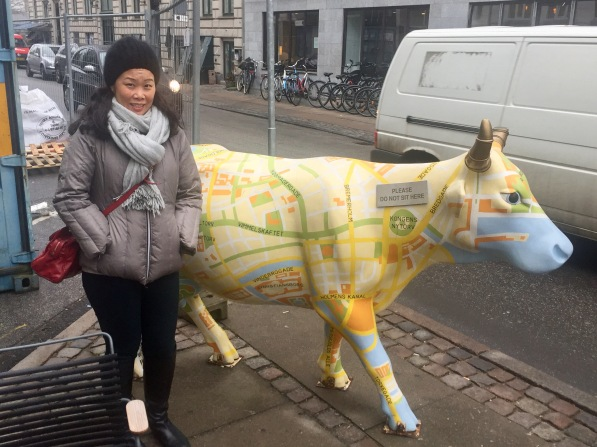 Anna and the bovine map